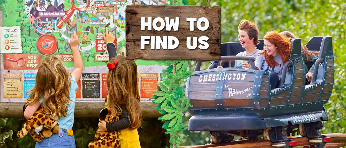 How to travel to Chessington Resort